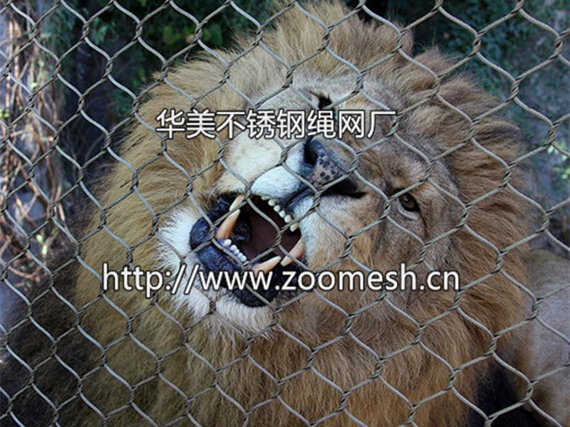 钢丝绳编织网,动物园围网