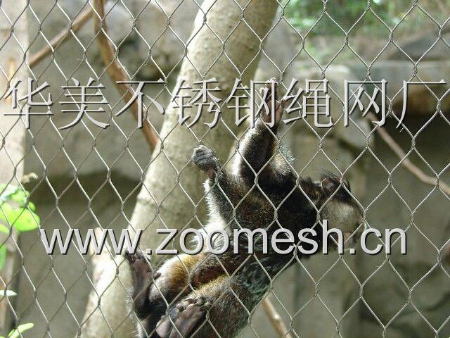 小型猫科动物围栏网,不锈钢绳网