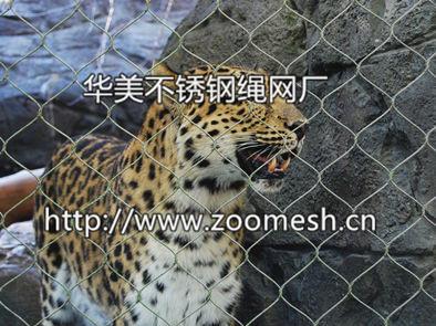 不锈钢绳网、动物园防护网、老虎围栏网、狮子笼舍隔离网