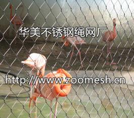 鸟语林网、不锈钢鸟园围网