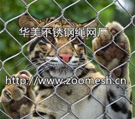 不锈钢柔性防护网、不锈钢绳网、动物园专用笼舍网