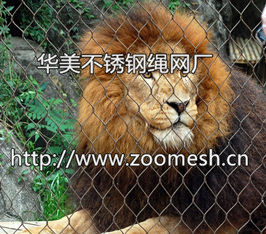 狮子围网、不锈钢狮子防护网、狮子笼舍网