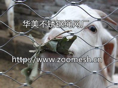 丝绳编动物_动物扣网,不锈钢绳扣网,动物笼舍扣网,不锈钢扣绳网,动物 ...