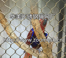钢丝绳编织网、不锈钢鹦鹉笼舍网