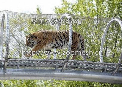 动物园老虎空中走廊通道-动物园猴子空中走廊通道