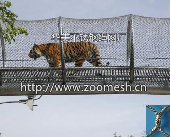 动物通道防护网/动物园高空走廊防护网/环状通道围网