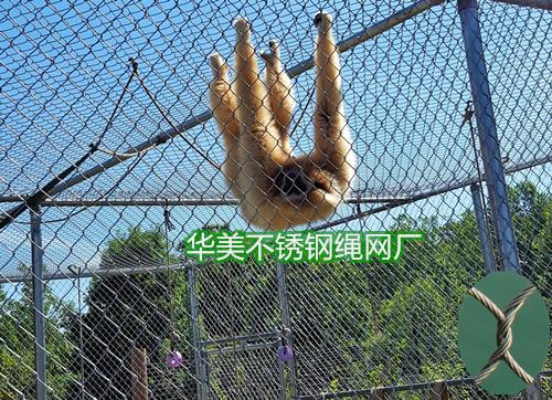 不锈钢编织绳网用于动物笼舍防护领域
