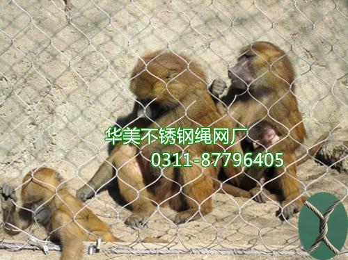 动物笼舍网、动物园笼舍网、不锈钢动物笼舍网、动物园笼舍、动物笼舍防护网