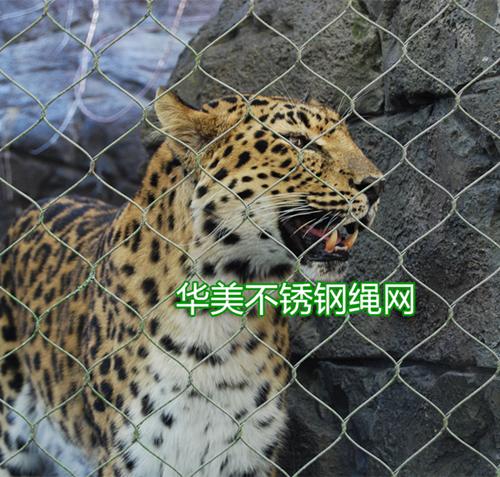 一般的动物园围网为铁丝网,尼龙网,木桩围栏,玻璃墙等,经过烈日暴晒