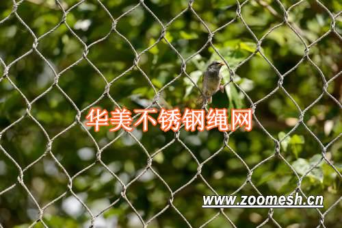高质量/低价格的不锈钢绳网-动物笼舍网