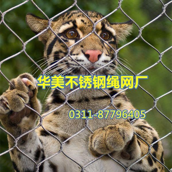 动物围网,动物园围网,动物笼围网-不锈钢绳网