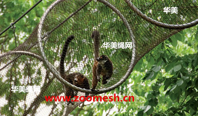动物攀爬走廊通道,猴子高空攀爬不锈钢编织通道