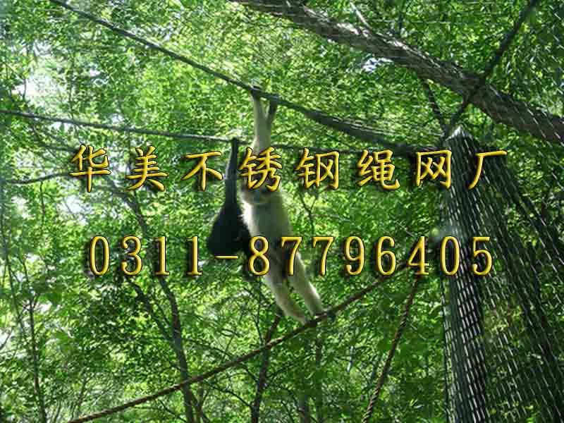 不锈钢编织网,动物园猴展览馆笼舍网.jpg