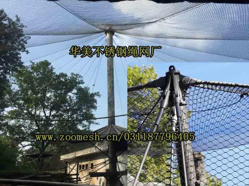 动物园猴展览馆笼舍网、动物园不锈钢绳网.jpg