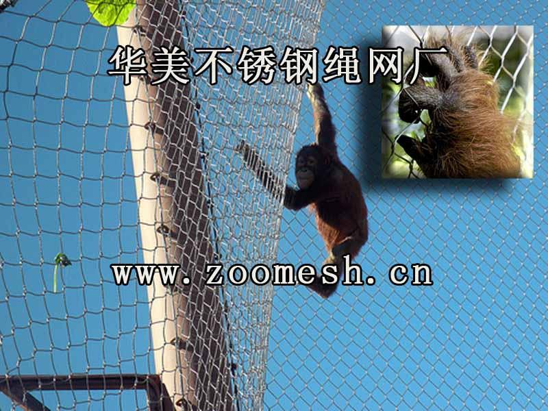 动物攀爬网、动物园猴展览馆笼舍网.jpg