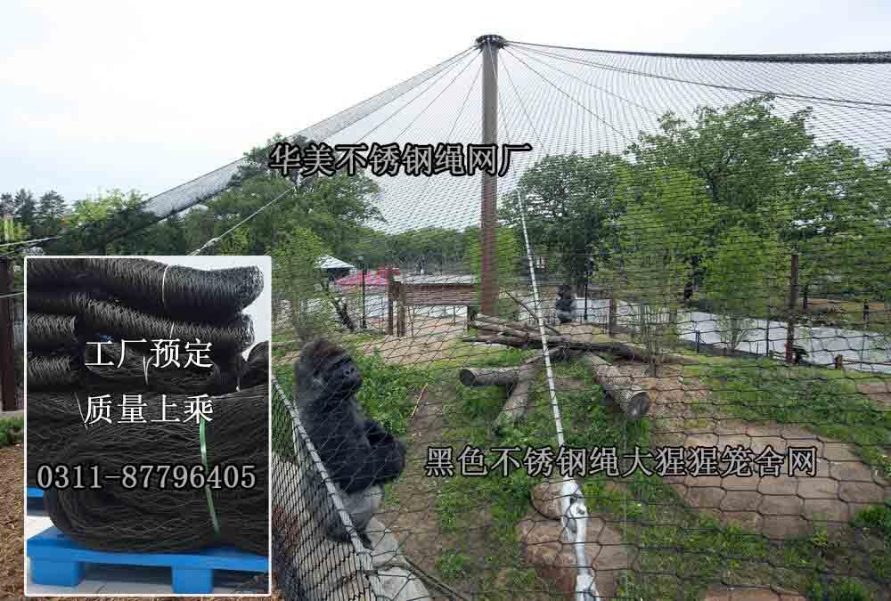 大猩猩围网、动物园猴展览馆笼舍网.jpg