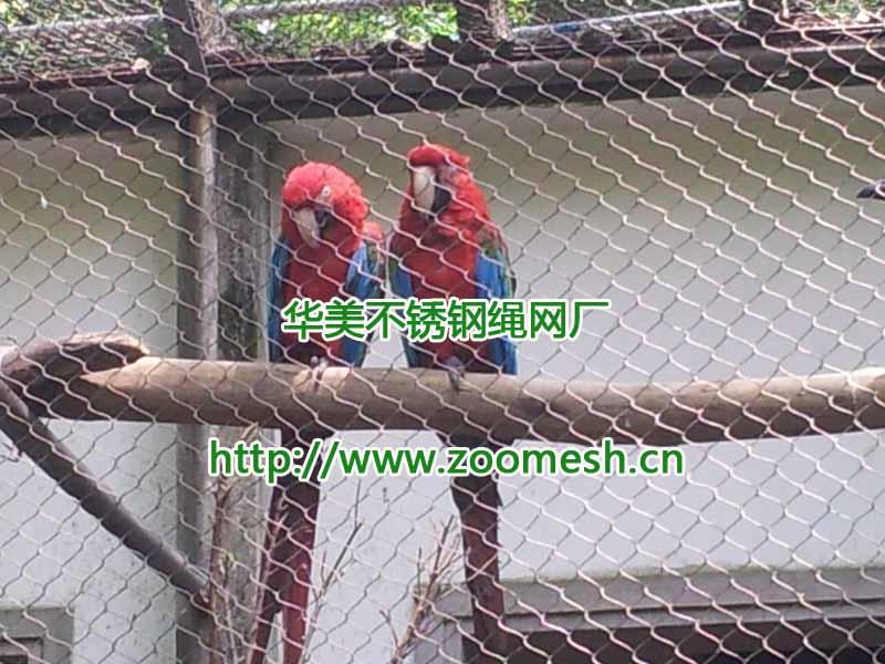 不锈钢鸟笼网比镀锌鸟笼网好.jpg